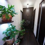 Живые растения смотрятся лучше на однотонных стенах, чем на пестрых.